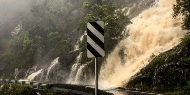 Impassable: Waterfalls flood the roads at Dorrigo National Park on Saturday.