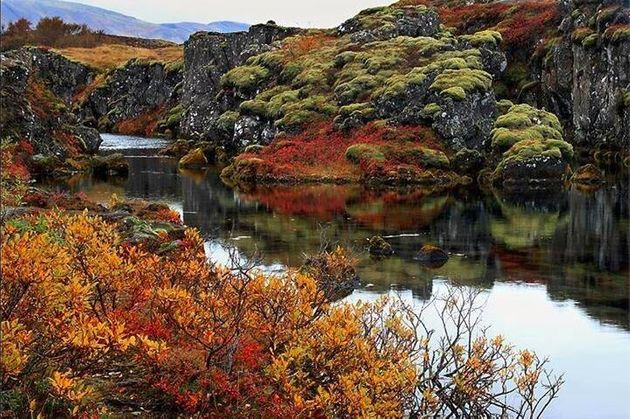 Thingvellir National Park is stunning all year