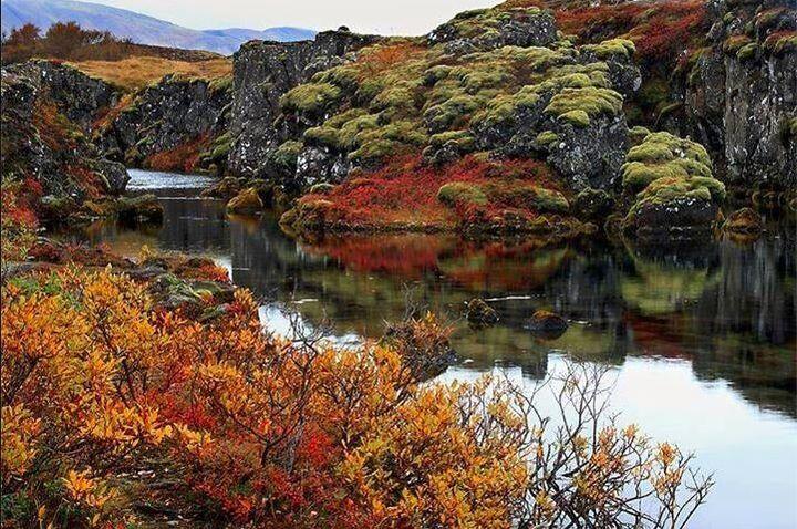 Thingvellir National Park is stunning all year round.
