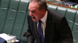 One Nation Are 'Bat Poo Crazy', Barnaby Joyce