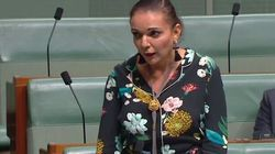 Watch Labor MP Anne Aly's Powerful Speech About The Reason She Turned To