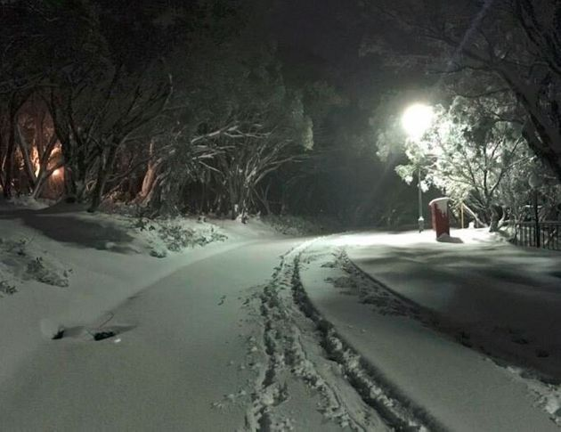 Enjoy These Images Of The Deep, Deep, Aussie Autumn Snow That Fell