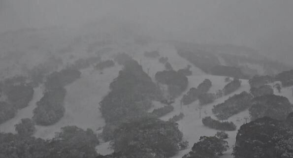 The Super Trail at Thredbo is looking rather