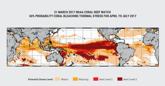 NOAA Coral Reef Watch's Coral Bleaching Alert Area for April to July 2017, issued on 21