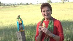 Politicians Take Aim At Pauline Hanson Over Calls For Easter Bunny