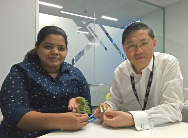 Professor Min Gu (right) and PhD researcher Litty Thekkekara with the electrode prototype.