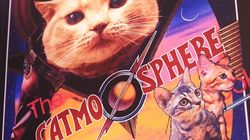 Visit the Catmosphere Space Cat Café in