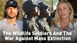 The Wildlife Soldiers And The War Against Mass