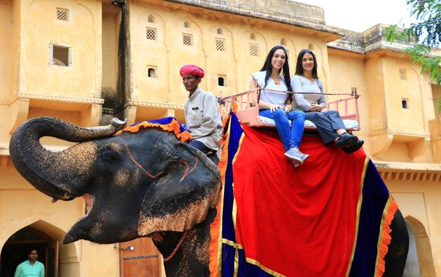 The practise of riding elephants is common in India, but is seen as highly