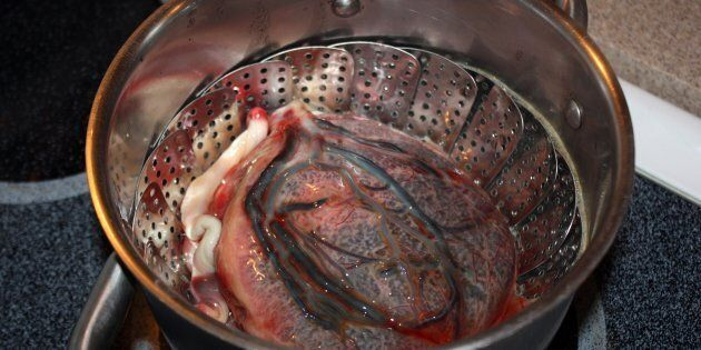 This is a human placenta in a pot and