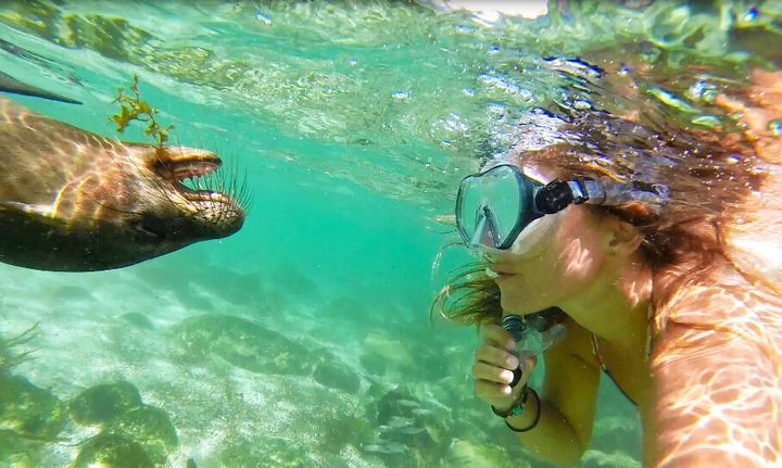 Steph Gabriel regularly posts to her social followers about marine conservation issues and encounters with marine life all over the world.