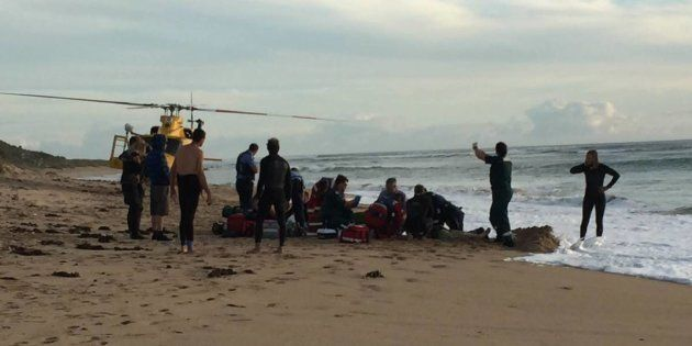 The incident occurred around 4pm when the boy was surfing with
