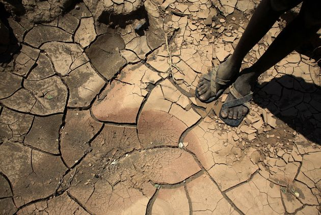 Over 23 million people across East Africa are facing a critical shortage of water and food, a situation...