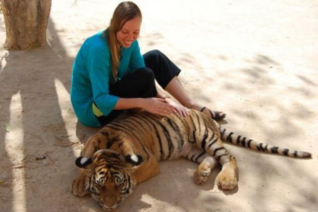 Cayla at the Tiger Temple in