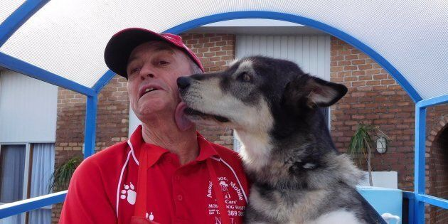 New franchisee Neil Proctor has become an instant hit with his new 'customers' like Tahli the husky.
