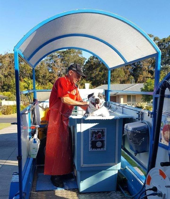The mobile dog wash franchise allows Proctor to set his own hours and work flexibly.