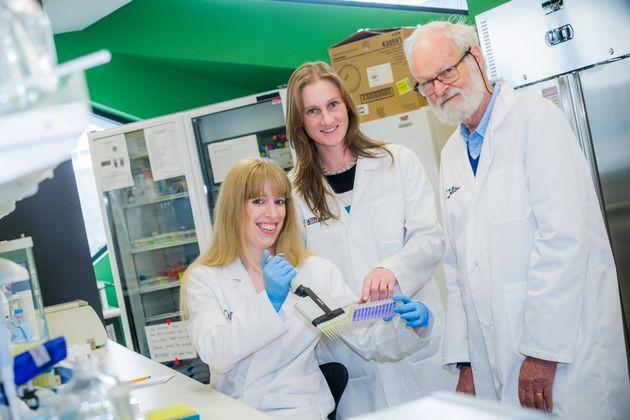Laura Jenkinson; Dr Amelia Johnston; Professor Nick