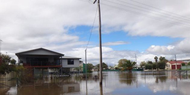 Flooding in Forbes peaked on Sunday, amid warnings of renewed heavy rains by the end of the