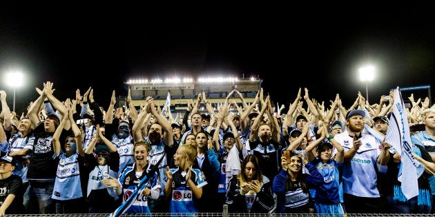 Sharks fans have gathered to greet the victorious Cronulla players late Sunday
