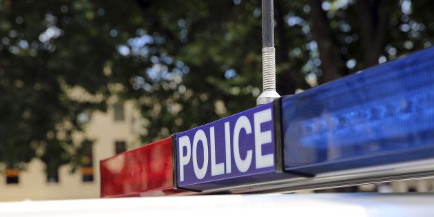 A woman allegedly armed with a chainsaw has been charged by police.