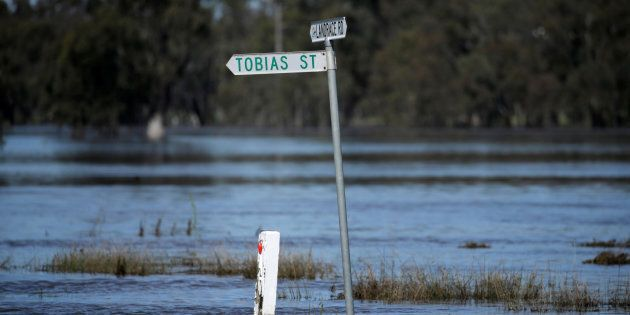 A leaking levee has prompted at evacuation order for part of Wangaratta in