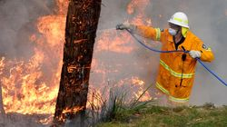Firefighters Battling Over 50 Bushfires Across