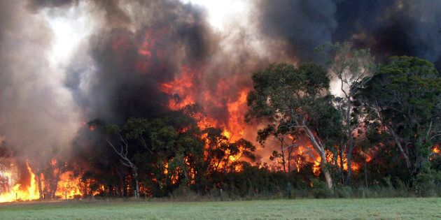 Fire authorities are in for another tough day on Monday with more than 50 bushfires burning around