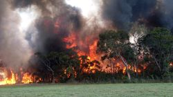 50 Bushfires Still Burn Across NSW After Horror