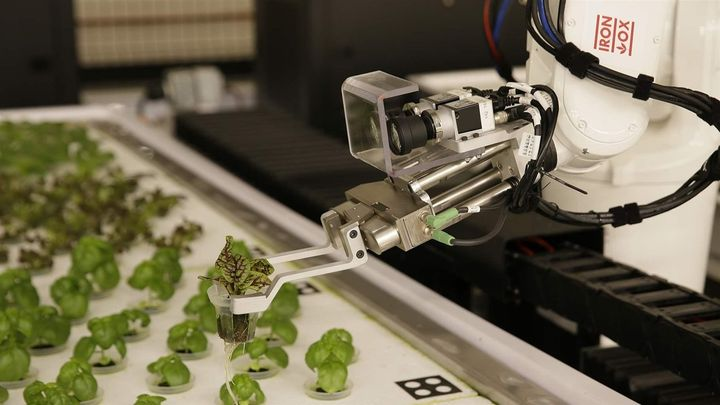 A robotic arm lifts plants being grown at Iron Ox, a robotic indoor farm, in San Carlos, California. Science and technology w