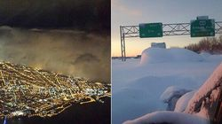 Otherworldly Photos Of Buffalo Buried In
