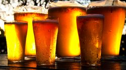 Celebrating Beer, a True Microbial