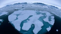 Managing the Arctic: Moving North Towards the Ice