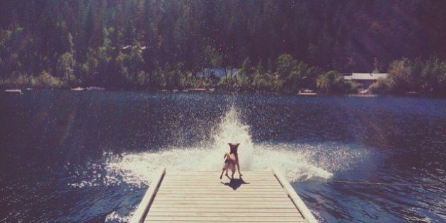 Heat Wave To Blast Southern B.C. As Officials Warn Of Forest