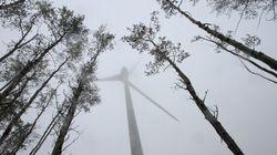 Wicked Winds Wallop B.C.'s