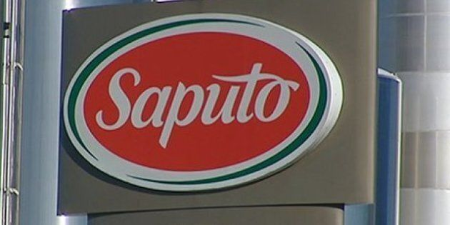 Saputo, Canada's Largest Diary Processor, To Refuse Inhumanely Sourced