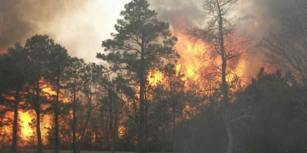 This was a wildfire in the Northern part of New Hanover County near Wilmington NC. The fire was being allowed to burn to the open field so it would be easier to stop.