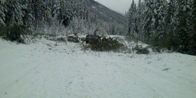 Highway 16 Avalanche Blocks Highway Near Mount Robson, B.C.: