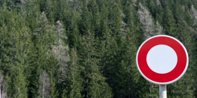 No vehicles sign in front of forest