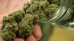 Vancouver Becomes 1st In Canada To Regulate Medical Pot
