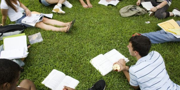 Group of friends (16-19) studying outdoors, elevated