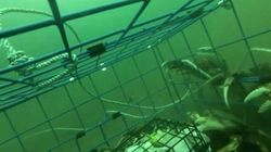 Crab Fishing Like You've Never Seen