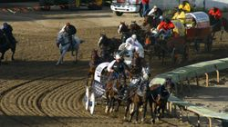 Why The Calgary Stampede Could Fizzle This