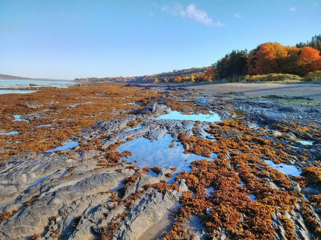 Fall Photos 2014: This Might Be Canada's Most Gorgeous Season