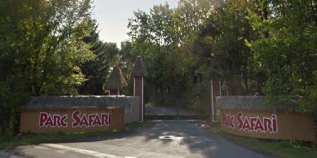 Parc Safari is defending itself for allowing a Muslim group to pray on its