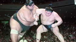 大相撲を愛して、25年あまり。熱狂フ的ファンのアメリカ人が、相撲界に伝えたいこと。