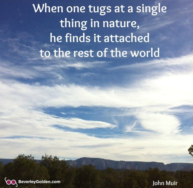 When one tugs at a single thing in nature, he finds it attached to the rest of the