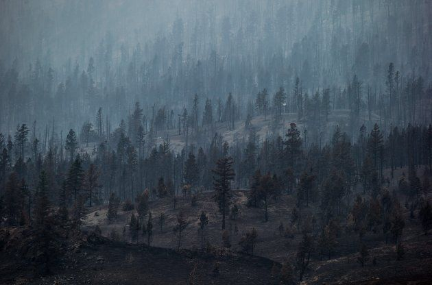 Smoke rises from trees burned by wildfire on a mountain near Ashcroft, B.C., on Monday. More than 200...