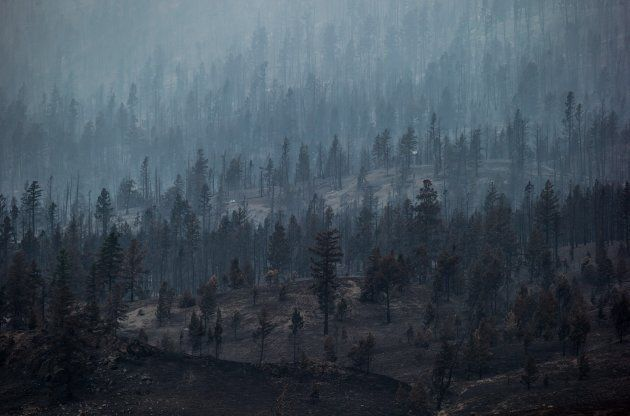 Smoke rises from trees burned by wildfire on a mountain near Ashcroft, B.C., on