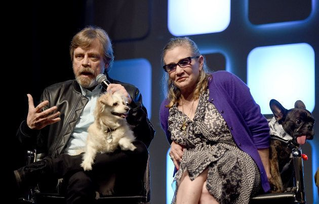 Mark Hamill, Carrie Fisher and her dog, Gary seen in a July 2016