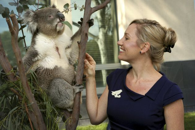 Greens Senator Larissa Waters poses with Winston the koala outside Parliament House on April 26, 2012...